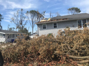 storm damage and fallen trees after the 2020 Iowa Derecho